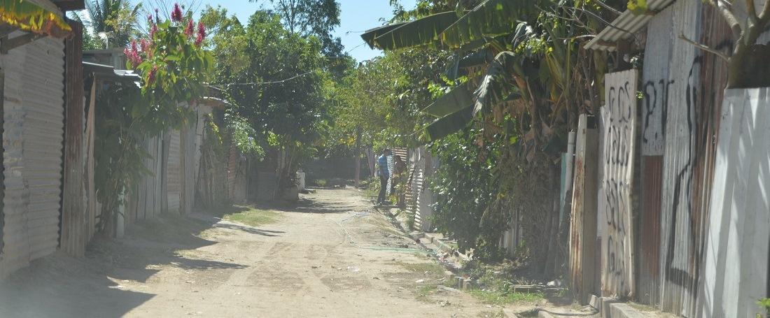 El Salvadorian community