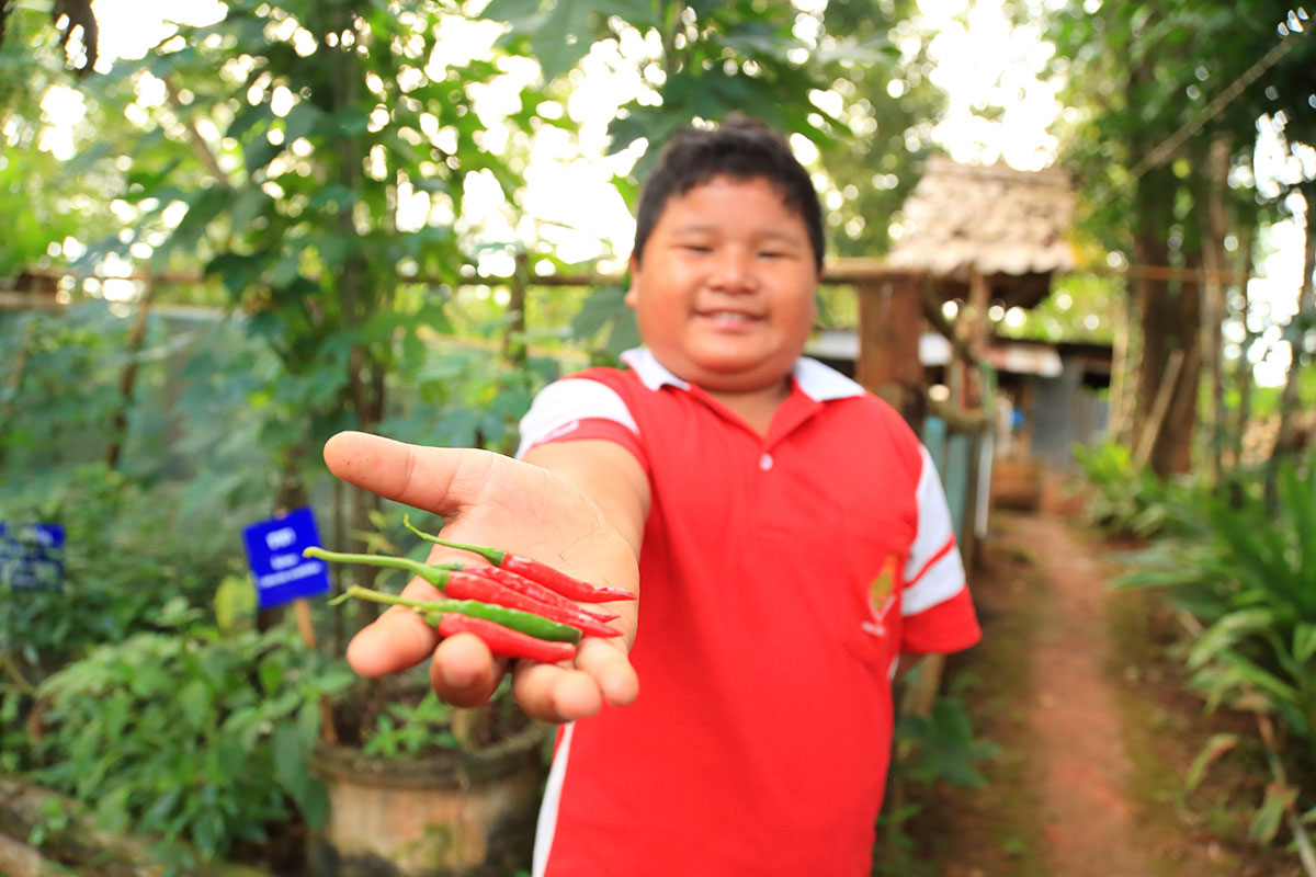 Young boy holding chillies.