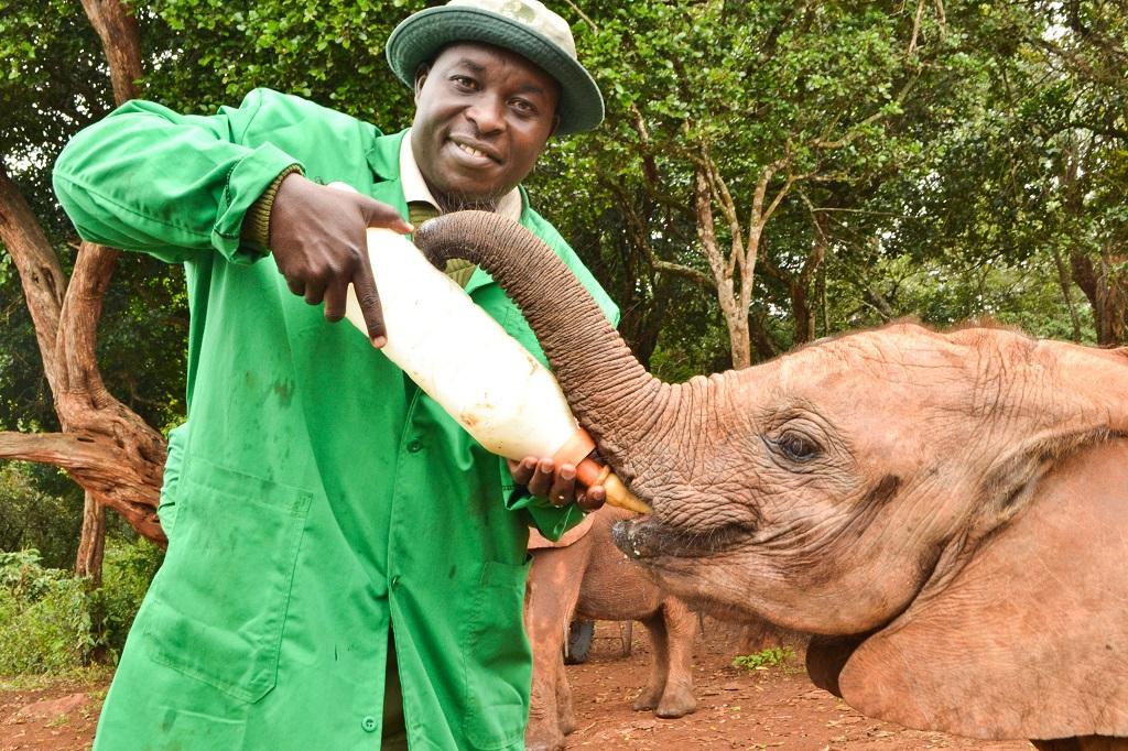 Elephant keeper