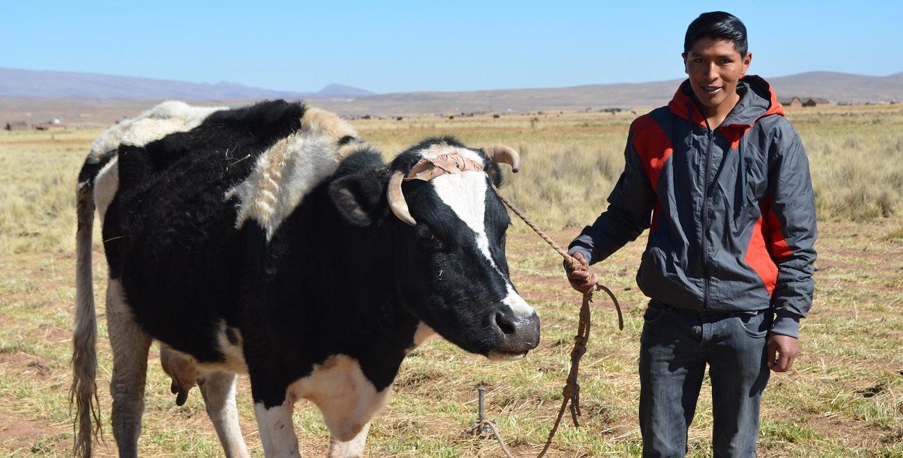 Miguel next to his cows