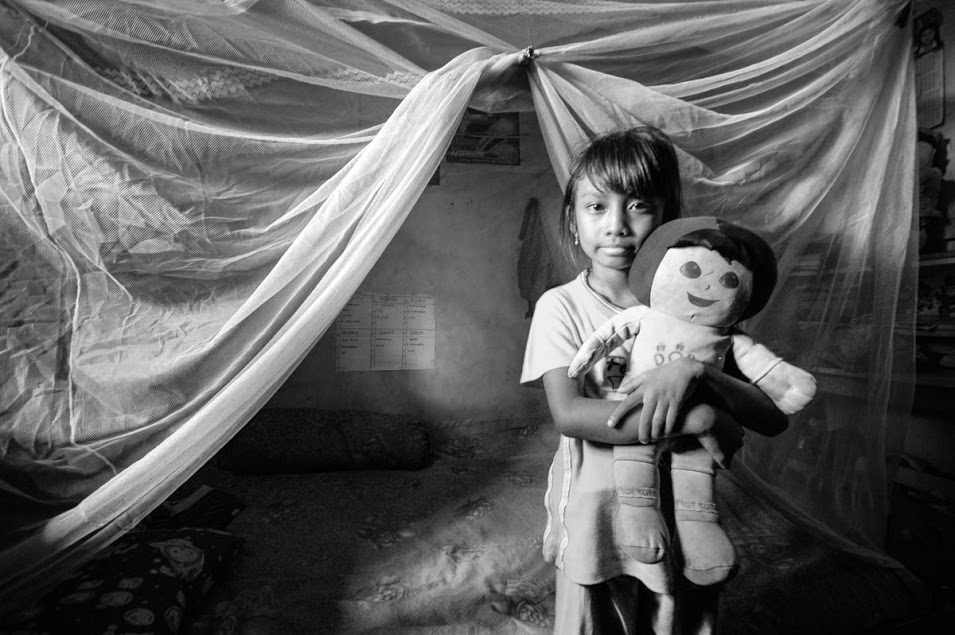 just-a-toy-mosquito-net