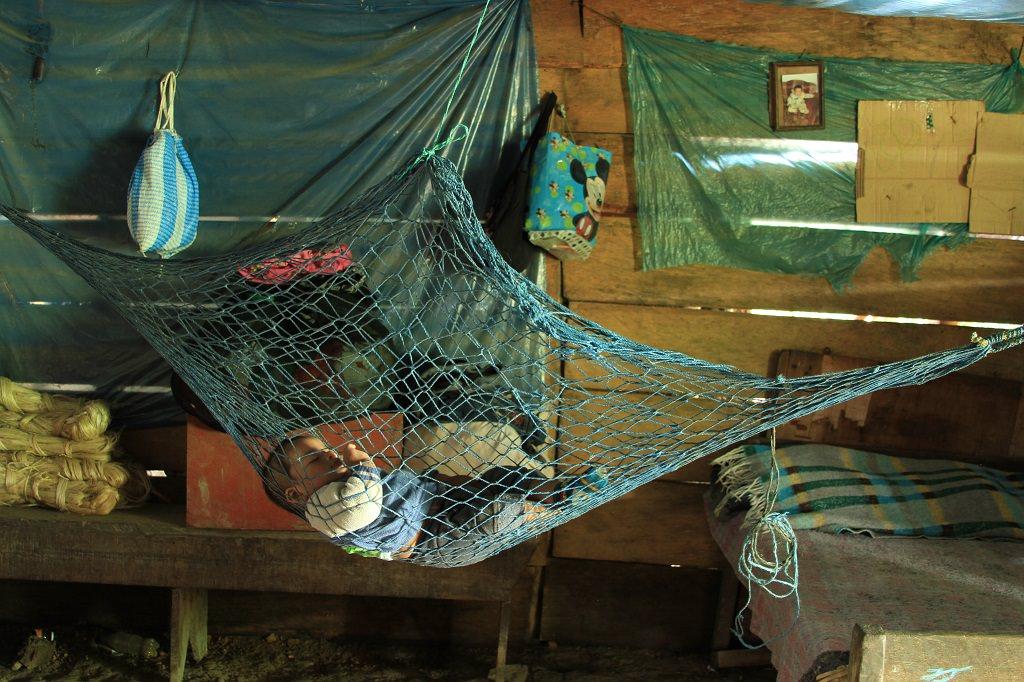 Baby Marcos sleeping in a hammock