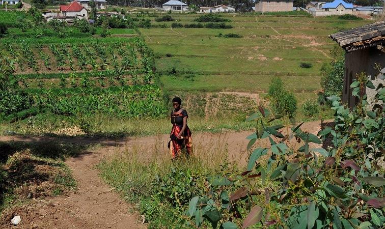 Rwandan girl walking through field