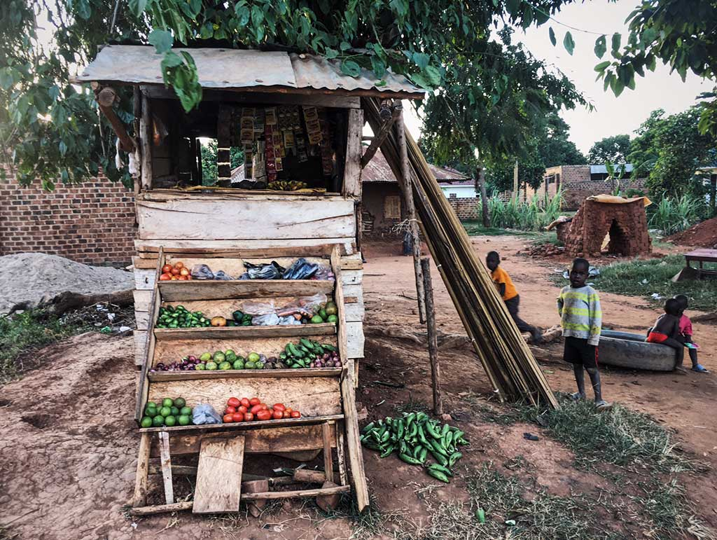 Fruit stand in Uganda