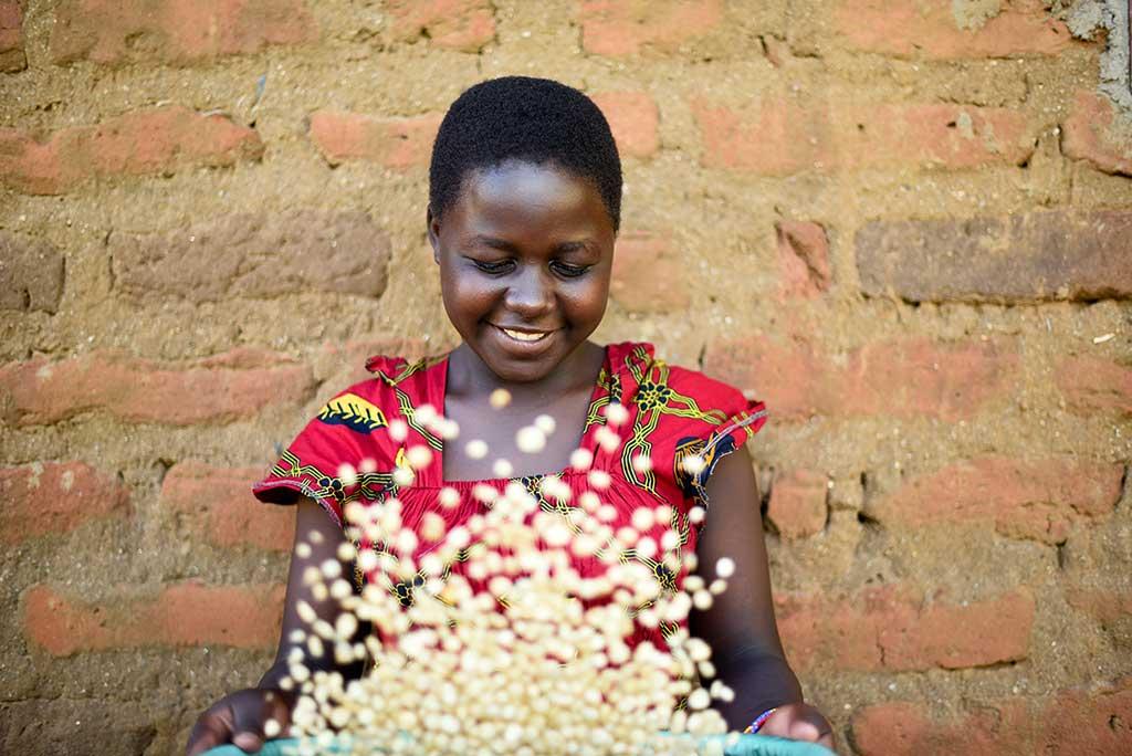 Ndanu throwing rice